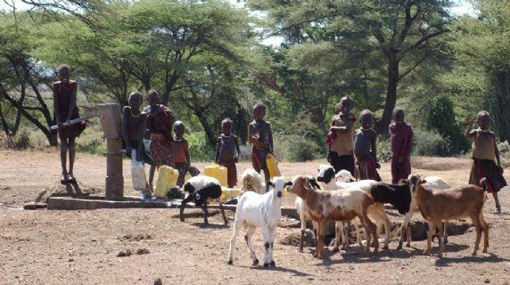 Preparare la comunità ad affrontare le emergenze dovute alle periodiche siccità nei distretti di Nakapiripirit e Moroto