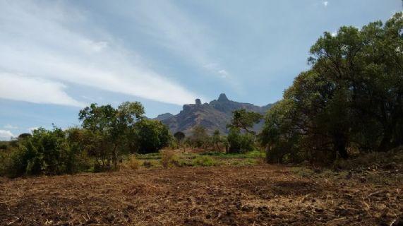 Sostentamento sostenibile per nuclei familiari rurali vulnerabili nei distretti di Moroto, Napak, Amudat e Nakapiripirit